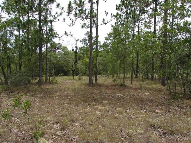 Lot 7 SW Sunshine Ridge Rd., Dunnellon, FL 34431 (MLS #OM605758) :: Bustamante Real Estate