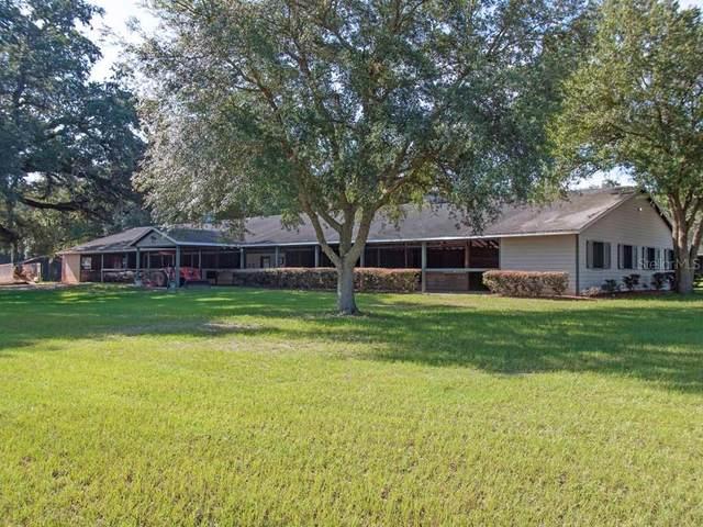 3790 SE 146TH Avenue, Morriston, FL 32668 (MLS #OM605805) :: Realty Executives Mid Florida
