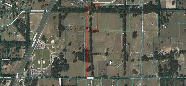 1150 NE 155TH Place, Citra, FL 32113 (MLS #OM606039) :: Southern Associates Realty LLC