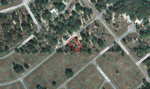 00 Malauka Loop, Ocklawaha, FL 32179 (MLS #OM606051) :: Bustamante Real Estate
