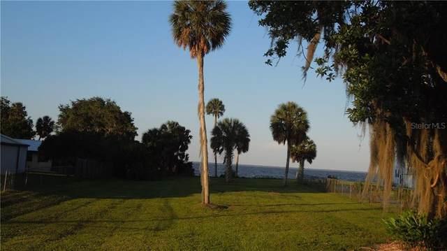 0 NE 306 Court, Salt Springs, FL 32134 (MLS #OM606117) :: Bustamante Real Estate