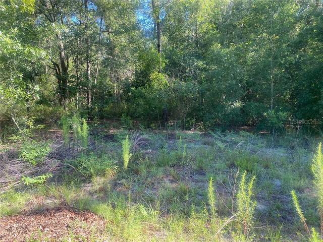 00 SW Sw 114 Lane, Lot 18 Lane, Dunnellon, FL 34432 (MLS #OM606127) :: Premier Home Experts