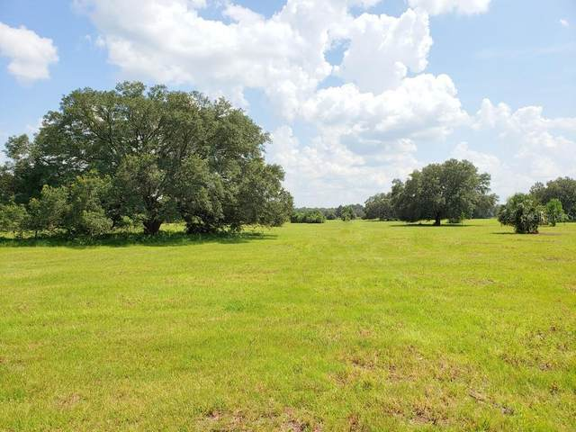 Lot 5 (10ac) NE Highway 315 Highway NE, Orange Springs, FL 32182 (MLS #OM606320) :: Young Real Estate