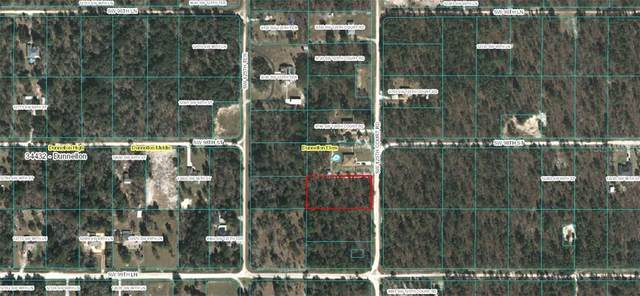 S 1/2 Lot 2 SW 125TH COURT Road, Dunnellon, FL 34432 (MLS #OM606396) :: Heckler Realty