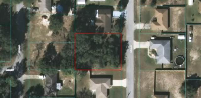 0 SE 88 Court, Summerfield, FL 34491 (MLS #OM606401) :: Bustamante Real Estate