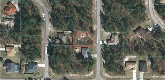 0 SW 78 Circle, Ocala, FL 34473 (MLS #OM606430) :: Alpha Equity Team