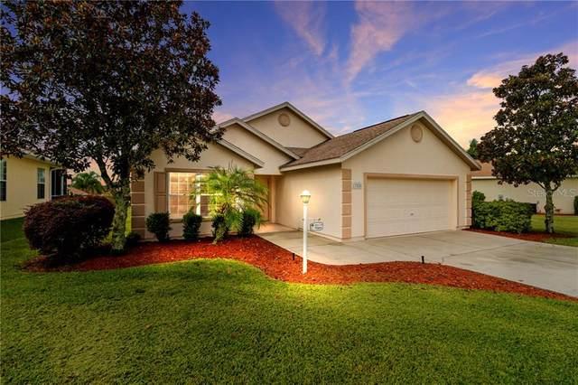 17826 SE 125TH Circle, Summerfield, FL 34491 (MLS #OM606605) :: Delgado Home Team at Keller Williams