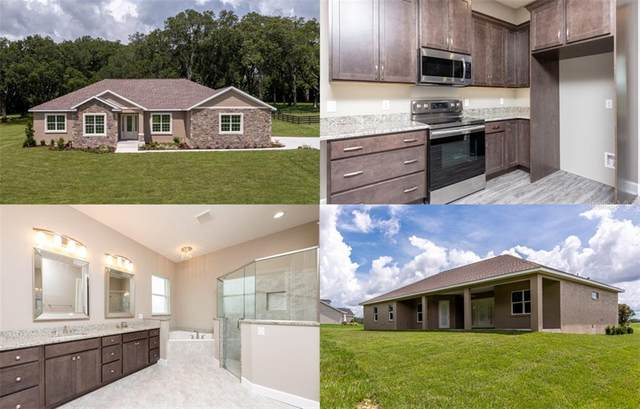 8899 NW 17 Circle, Ocala, FL 34475 (MLS #OM606658) :: Team Buky