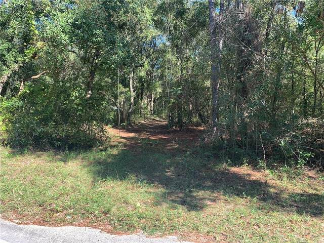 205 Baden Powell Road, Hawthorne, FL 32640 (MLS #OM606727) :: Team Buky