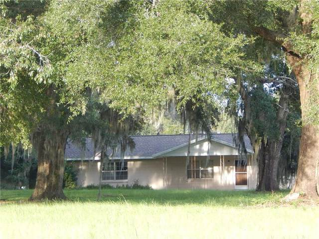 13785 S Highway 475, Summerfield, FL 34491 (MLS #OM606928) :: Mark and Joni Coulter | Better Homes and Gardens