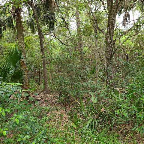 SE 188TH Terrace, Ocklawaha, FL 32179 (MLS #OM606959) :: Cartwright Realty