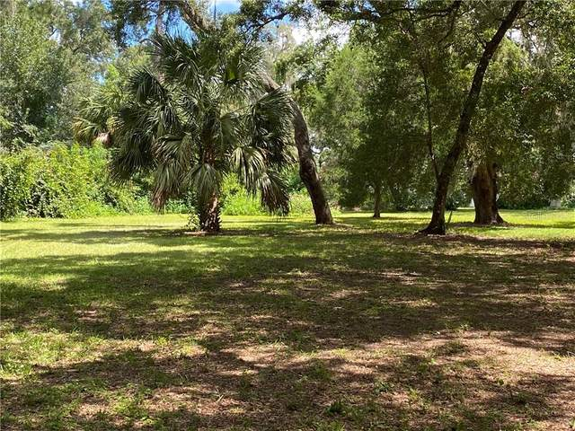 0 SE 164TH CIRCLE, Ocklawaha, FL 32179 (MLS #OM607002) :: Godwin Realty Group