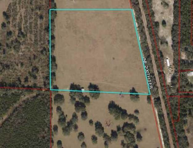 5550 NE 200TH Terrace, Williston, FL 32696 (MLS #OM607004) :: Griffin Group