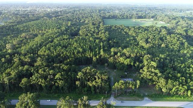 2700 SE Highway 42, Summerfield, FL 34491 (MLS #OM607035) :: Mark and Joni Coulter | Better Homes and Gardens