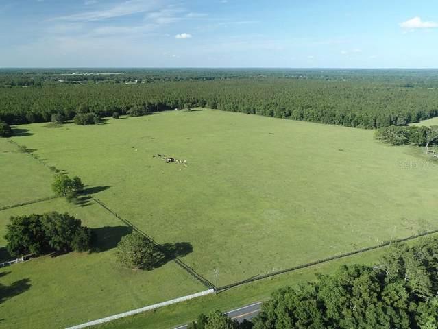 0 NW Hwy 464B, Morriston, FL 32668 (MLS #OM607046) :: Bustamante Real Estate