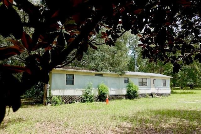 19705 SW 36TH Street, Dunnellon, FL 34431 (MLS #OM607058) :: Prestige Home Realty