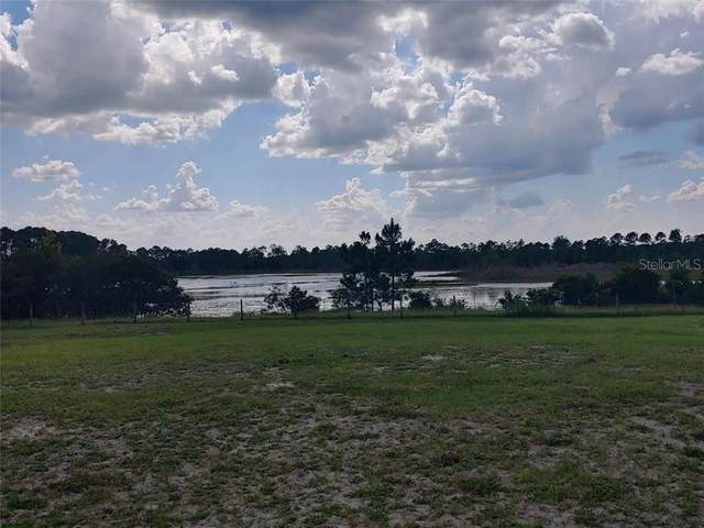 Buck Run Drive, Paisley, FL 32767 (MLS #OM607103) :: Heckler Realty