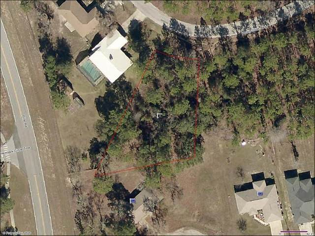 Pecan Drive Loop, Ocala, FL 34472 (MLS #OM607196) :: Cartwright Realty