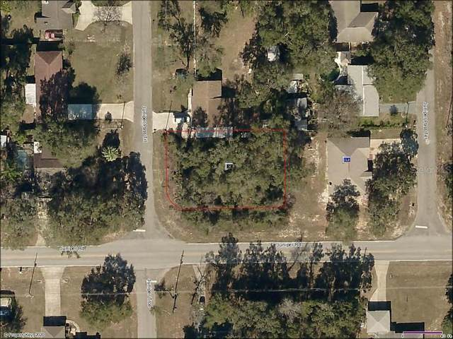 Juniper Pass Trail, Ocala, FL 34472 (MLS #OM607201) :: Cartwright Realty