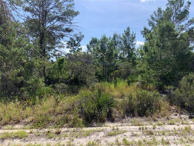 440 Keos Avenue NE, Lake Placid, FL 33852 (MLS #OM607514) :: Bustamante Real Estate