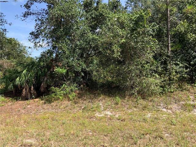 105 Edenwald Avenue NW, Lake Placid, FL 33852 (MLS #OM607524) :: Bob Paulson with Vylla Home