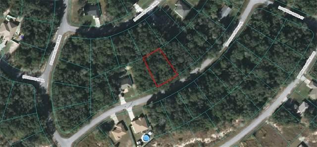 Dogwood Drive Trail, Ocala, FL 34471 (MLS #OM607605) :: Team Borham at Keller Williams Realty