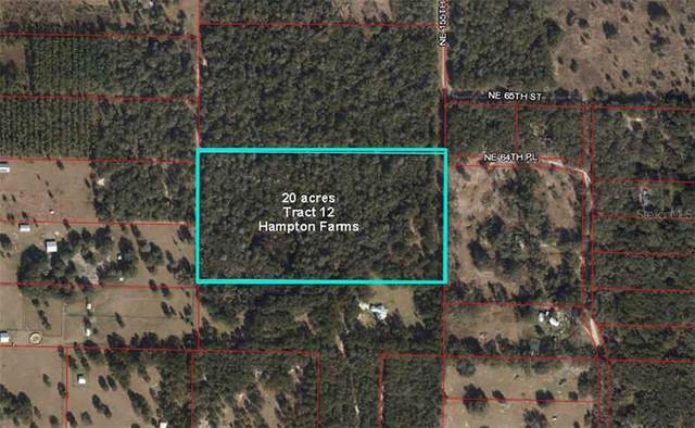 TBD NE 64 Place, Williston, FL 32696 (MLS #OM607627) :: Alpha Equity Team