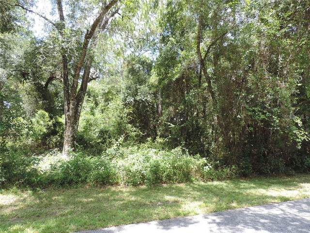 4292 E Nugget Pass Place, Dunnellon, FL 34434 (MLS #OM607644) :: Lockhart & Walseth Team, Realtors
