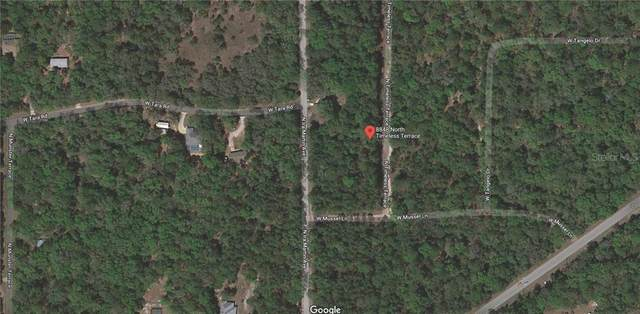 8848 N Timeless Terrace, Crystal River, FL 34428 (MLS #OM607649) :: Team Buky