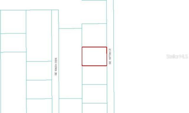 TBD SE 187 Court, Ocklawaha, FL 32179 (MLS #OM607779) :: CENTURY 21 OneBlue
