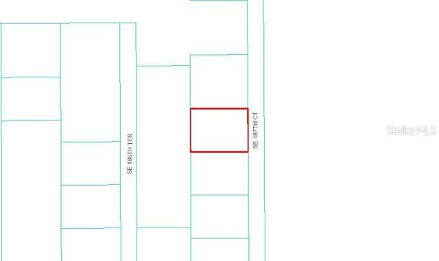 TBD SE 187 Court, Ocklawaha, FL 32179 (MLS #OM607779) :: Team Buky