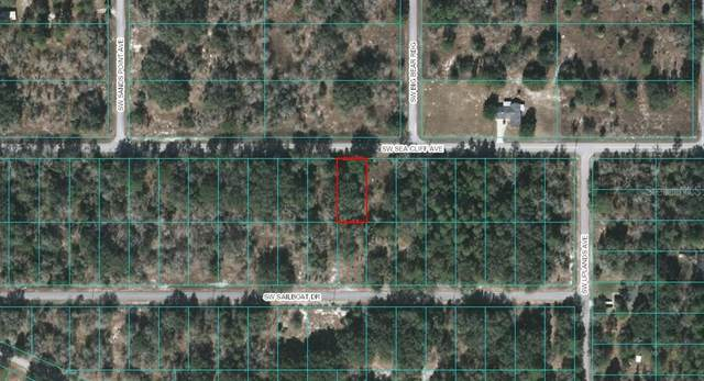 Sw Sea Cliff Avenue, Dunnellon, FL 34432 (MLS #OM607931) :: Lockhart & Walseth Team, Realtors