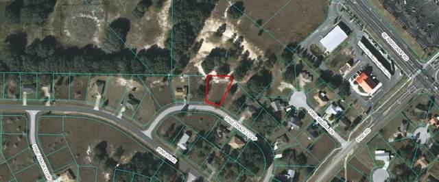 Pine Trace Loop, Ocala, FL 34472 (MLS #OM607970) :: Zarghami Group