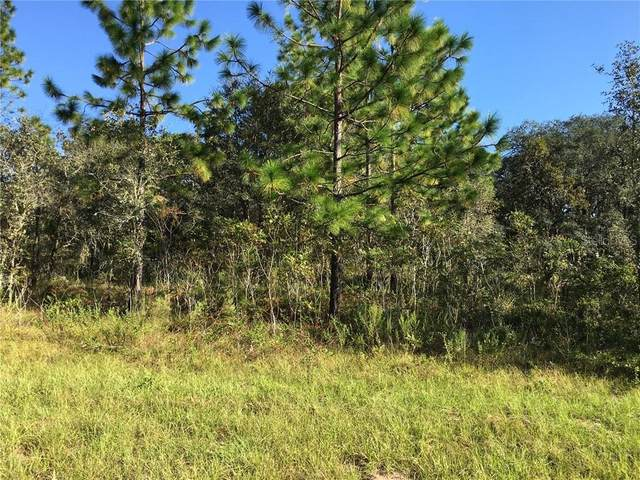 TBD SE 87TH Place, Dunnellon, FL 34431 (MLS #OM608006) :: Alpha Equity Team