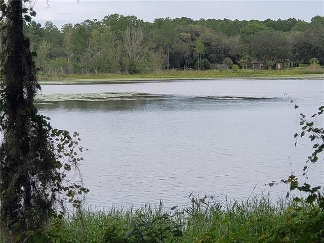 2387 W Springlake Drive, Dunnellon, FL 34433 (MLS #OM608272) :: Zarghami Group
