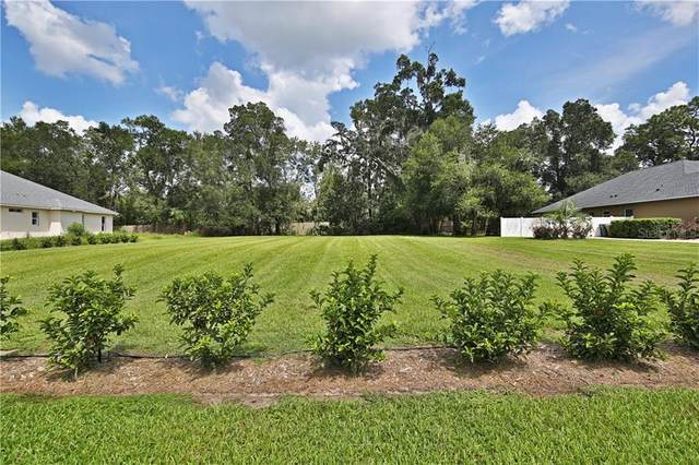2715 SE 28TH Street, Ocala, FL 34471 (MLS #OM608405) :: Young Real Estate
