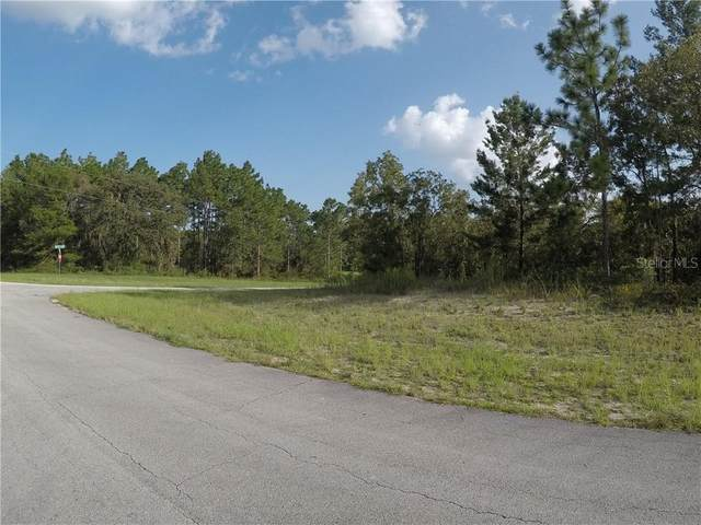 Sw 138Th Place, Ocala, FL 34473 (MLS #OM608461) :: CGY Realty