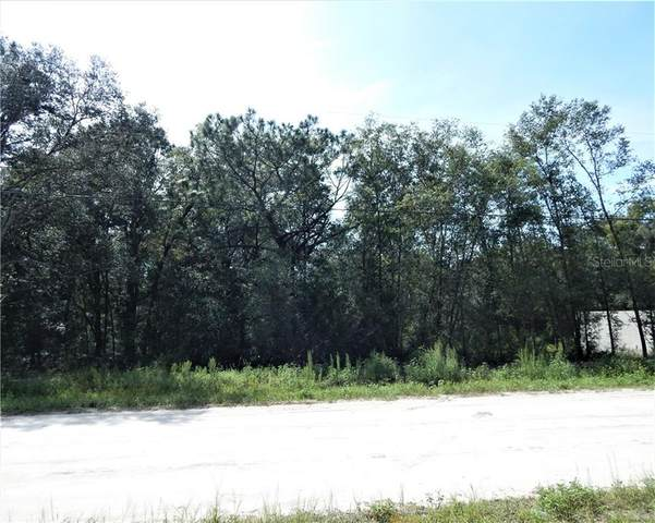 TBD SW 140TH Court, Ocala, FL 34481 (MLS #OM608463) :: Team Borham at Keller Williams Realty