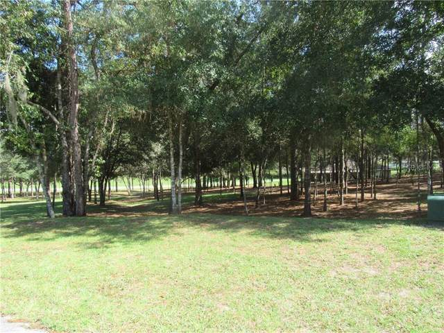 0000 Sw 194Th Circle, Dunnellon, FL 34432 (MLS #OM608472) :: Baird Realty Group