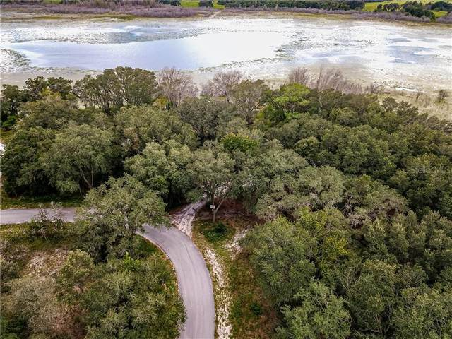 0 SW Shorewood Drive N, Dunnellon, FL 34431 (MLS #OM608541) :: Bustamante Real Estate