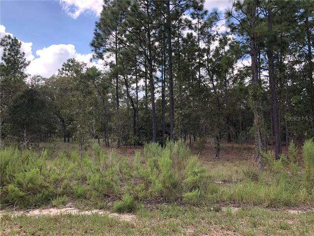 TBD SW Seaweed Avenue, Dunnellon, FL 34431 (MLS #OM608549) :: Young Real Estate