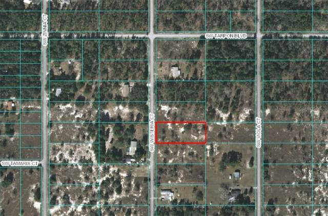 SW Wisteria, Dunnellon, FL 34431 (MLS #OM608620) :: Alpha Equity Team