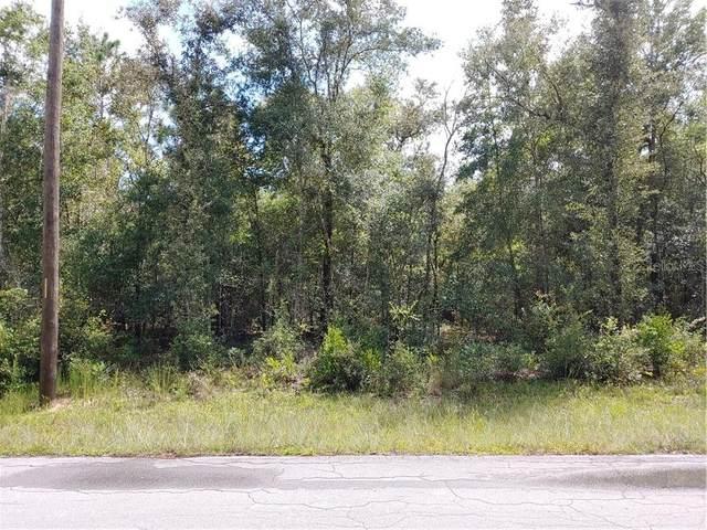 00 NE 13TH Place, Williston, FL 32696 (MLS #OM608647) :: Tuscawilla Realty, Inc