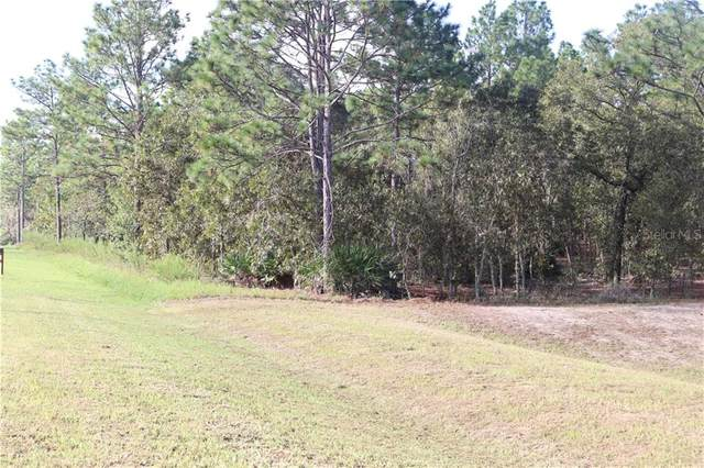 125 CT RD, Dunnellon, FL 34432 (MLS #OM608661) :: Premier Home Experts