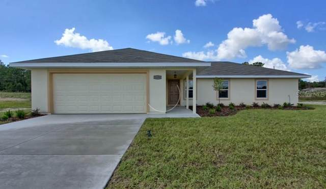 12483 SE 102ND Avenue, Belleview, FL 34420 (MLS #OM608702) :: Team Borham at Keller Williams Realty
