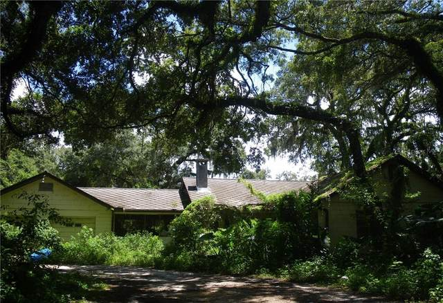 4456 Mckethan Road, Dade City, FL 33523 (MLS #OM608749) :: The Price Group