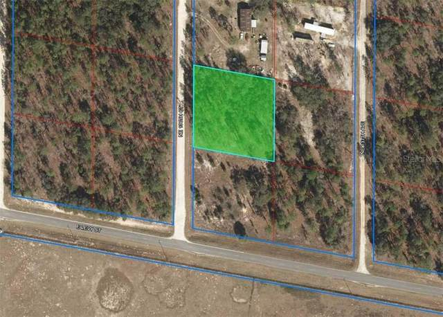 91 NE 136TH Court, Williston, FL 32696 (MLS #OM608788) :: Tuscawilla Realty, Inc