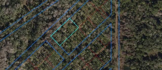 TBD SW 109TH Avenue, Cedar Key, FL 32625 (MLS #OM608795) :: Tuscawilla Realty, Inc