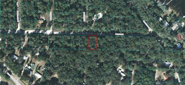 00 NE 230TH Street, Fort Mc Coy, FL 32134 (MLS #OM608839) :: Team Buky