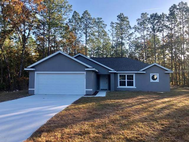 10286 N Gardner Way, Citrus Springs, FL 34434 (MLS #OM608888) :: Cartwright Realty
